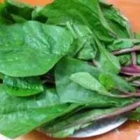 விவசாயம் | Vivasayam பற்றிய கட்டுரைகள் ,தோட்டக்கலை பயிர்கள், ஆடு மாடு வளர்ப்பு Blog Images, Spinach, Beans, Vegetables, Food, Essen, Vegetable Recipes, Meals, Yemek