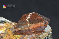 Kryształ cyrkonu na skale. Kryształ jest wspaniale wykształcony zawiera niewielkie wyszczypanie w rogu. Bardzo ładny i rzadki okaz. Cyrkony z racji łupliwości i twardości są podatne na uszkodzenie. Pochodzenie: kop. Kunnar, Afganistan Wymiary: 6.0 x 5.9 x 5.2 cm Waga: 221 gram Wzór chemiczny: ZrSiO4 Minerał towarzyszący: Biotyt (Mika)