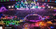 Credit to @electronicalife : The colors  #edm