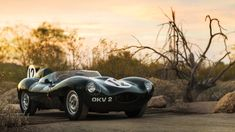 A 1954 Jaguar D-Type Works car will be one of the highlights of the RM Sotheby's Arizona 2018 sale during the Scottsdale classic car auction week.