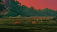 Backgrounds: THE LION KING - Google Search
