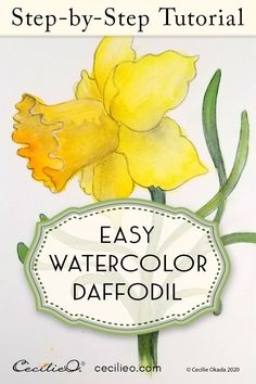 Relax with step-by-step watercolor and drawing tutorials. Experienced illustrator shows you how, sharing creative work, decorative designs and inspiration along the way. Watercolor Art Lessons, Watercolor Paintings For Beginners, Watercolor Tips, Watercolor Cards, Watercolour Painting, Floral Watercolor, Watercolor Pencil Art, Step By Step Watercolor, Tole Painting