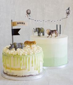 Mint green ombre cake and light green drip cake jungle animals Jungle Birthday Cakes, Jungle Theme Cakes, Animal Birthday Cakes, Safari Cakes, Animal Cakes, First Birthday Cakes, Jungle Party, Mint Green Cakes, Zoo Cake