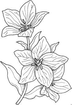 Blumengemischt_HFB-0131 (478x700, 63Kb)