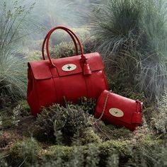 Mulberry | Beautiful and bold, this season's Poppy Red stands out from the crowd.