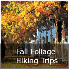 When on vacation in the Northeast during fall, there's really no better sightseeing experience than heading into the countryside to view the fall foliage in New England. While many choose …
