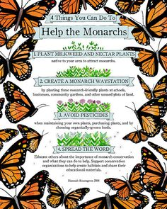 """8x10"""" Four Things You Can Do To Help the Monarchs Print"""