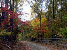 Hughesville, Maryland
