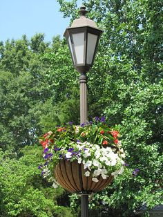 File:Gloucester, VA Flower Basket on lamp post. - By Chuck Thompson of TTC Media.JPG