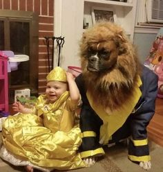 Funny Animal Pictures - View our collection of cute and funny pet videos and pics. New funny animal pictures and videos submitted daily. Cute Funny Animals, Funny Animal Pictures, Cute Baby Animals, Funny Dogs, Dog And Owner Costumes, Pet Costumes, Costume Ideas, Costume Contest, Couple Costumes