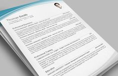 Concise Cv Template To Use As A Guide  Cv    Cv Template