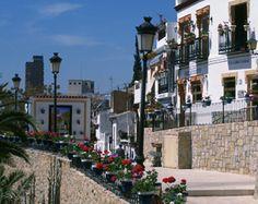 carrers a Alacant amb roses y colors