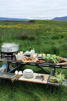 Icelandic picnic on Videy Island