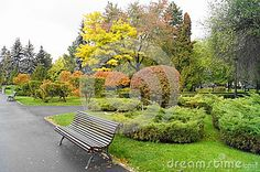 The colors of autumn in the park