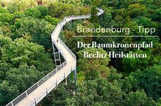 Auf dem Baumkronenpfad Beelitz Heilstätten kommt Ihr dem Himmel ein Stück näher und auch der deutschen Geschichte. Ein unglaublicher Ausblick auf die...