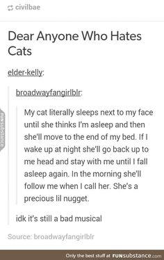 Cats are precious