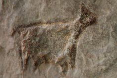"""Unidentified quadruped (most probably an herbivore) found in the cave of Oreille d'Enfer (""""ear of Hell""""), in Les Eyzies-de-Tayac, Dordogne, France. Aurignacian culture. It can be viewed in the National Prehistory Museum in Les Eyzies-de-Tayac."""