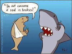 *Stay away sharky...