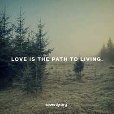 Compassion, Wise Words, Paths, Motivational Quotes, Love, Sayings, Times, Wall, Texts