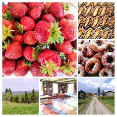 ברוכים הבאים לחווה שלנו. טבע יפה. סביבה שלווה. כשרות תורשתית. Finland, Fruit