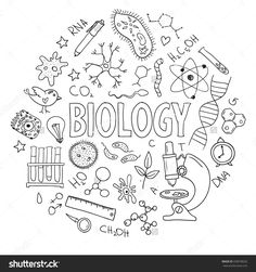 Hand Drawn Vector Set With School Equipment. Can Be Used For Design. Biology…