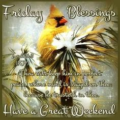 Bible Verse Friday Weekend Quote bird religious quote weekend friday happy friday bible verse good morning friday have a great weekend Good Morning Prayer, Good Morning Friday, Friday Weekend, Happy Friday, Sunday, Good Night Blessings, Morning Blessings, Morning Prayers, Christmas Quotes