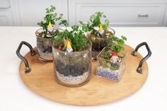 """Your guests will be tickled pink seeing these adorable little terrarium gardens set on your seder table this Passover, complete with Parsley """"Karpas"""" sprigs """"growing"""" from the garden, Andy's favorite Garden Gnomes, and Frogs (one of the Passover Plagues)! We like to use what we have laying around the house to fill the bottom of …"""