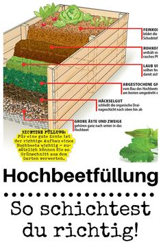 de- So that a # raised bed works properly, . - Fill raised bed self.de– So one # raised bed also works properly, it is not enough, just - Building A Raised Garden, Raised Garden Beds, Raised Beds, Garden Care, Potager Palettes, Summer Decoration, Diy Garden Projects, Garden Ideas, Terrace Ideas