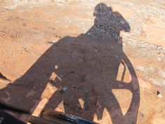 Sedona Arizona Wheelchair Travel at http://www.wheelchairtraveling.com/