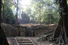 Palenque - in the hart of the jungle you discover hidden ancient city. Don't skip the good tourist guides outside the site