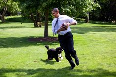 Bo chases President Obama on the South Lawn of the White House.5/12/2009.