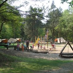 camping harskamperdennen in kootwijk tussen amersfoort en apeldoorn