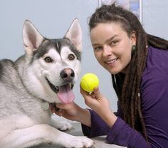 Dog nearly dies after swallowing tennis ball PDSA vets have saved the life of a dog that swallowed a TENNIS BALL.     Two-year-old Husky-cross Pax from Brighton came down with a sudden mystery illness recently; he had stopped eating, was being sick and became very lethargic, so worried owner Anna Dziedzic (29) turned to vet charity, PDSA, for help.