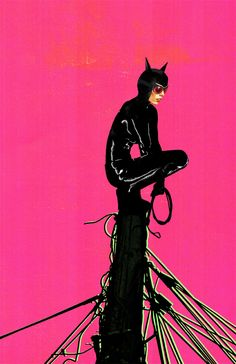 Catwoman Pink by skyscraper48.deviantart.com on @deviantART #selinakyle