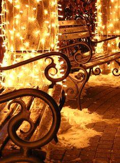 Twinkle Lights and filigree Cozy Christmas, Outdoor Christmas, White Christmas, Christmas Lights, Christmas Holidays, Christmas Decorations, Xmas, Christmas Carol, Twinkle Lights