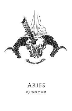 Amrit Brar's Portfolio - Book IV: Resolutions