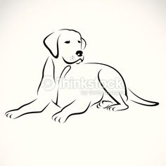 Vektorgrafik : Vector image of an dog labrador