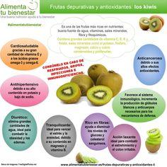 Infografía Frutas depurativas y antioxidantes: el Kiwi