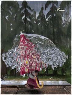 . Gif Photo, Photo Art, Gifs, Cute Photos, Cute Pictures, Rain Gif, Bear Gif, Cute Puns, Masha And The Bear