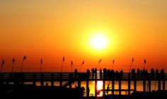 A wonderful sunrise at chilika  lake, Odisha. Tour it with us: http://www.swostihotels.com/