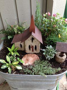 Fairy Garden, mini hostas