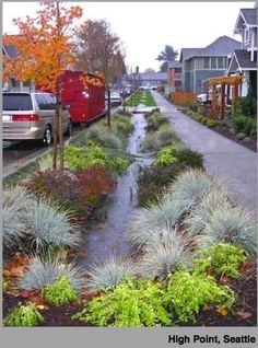 Swale and berm = How our lawns should look #ethical #permaculture