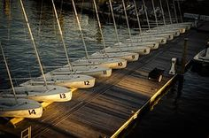 Barcos De Vela, Muelle, Regata, El Agua