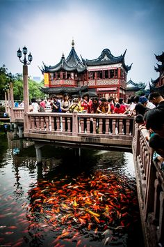 Part of Yu Garden in Shanghai, China. The is a place that sells tea here, where they have Clinton picture drinking tea there!