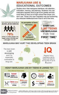 004 False Marijuana Effects on the Body National Institutes of