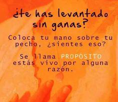 La Bioguia | Mi BLOG NUEVA ETAPA