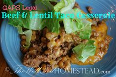 SCD Beef & Lentil Taco Casserole (*Use homemade salsa, guacamole & substitute dripped SCD yogurt for sour cream option...)