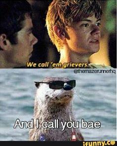 im the otter