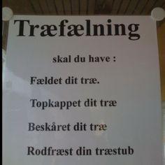 Det fæle træ ska' fæles!! ( opslagstavlen hos Købmanden i Rågeleje)