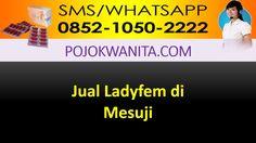 [SMS/WA] 0852.1050.2222 - Ladyfem  Mesuji | Lampung | Agen Jual Distributor